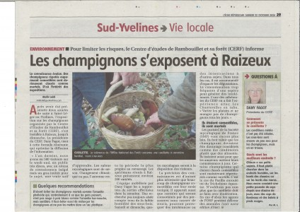 Article exposition champignons